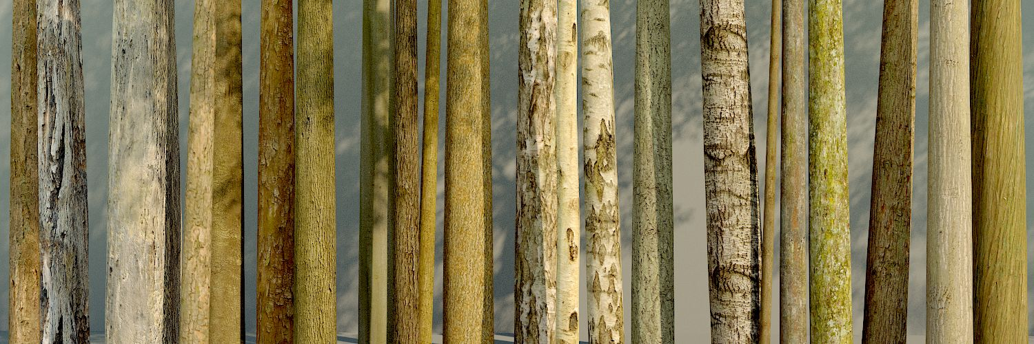 Bark textures included when you buy The Grove 3D tree growing software.